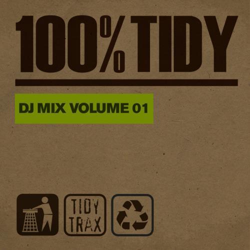 100% Tidy, Vol. 1 (2021)