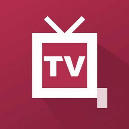 TV + ЦТВшка Premium 2.2.6 (Android)